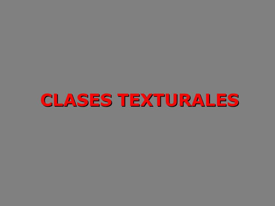 CLASES TEXTURALES