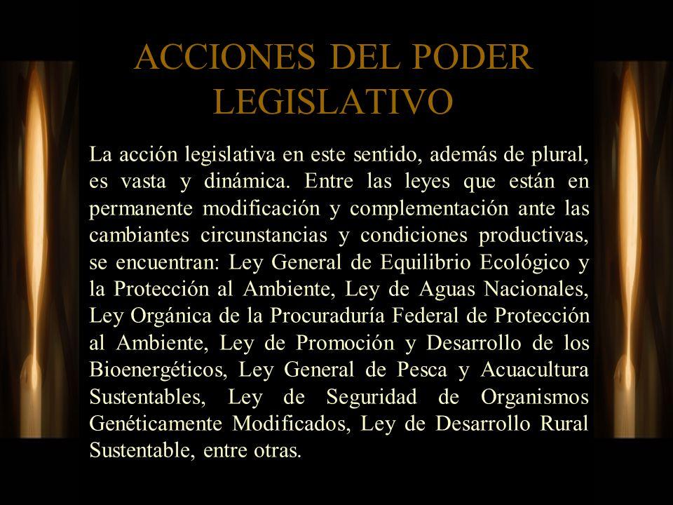 ACCIONES DEL PODER LEGISLATIVO