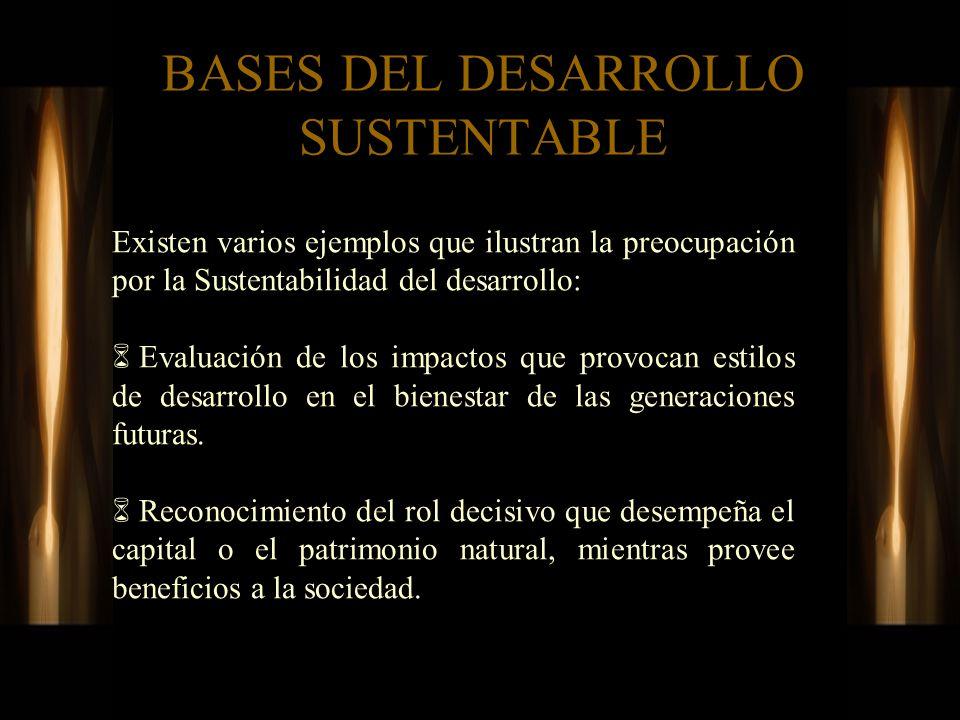BASES DEL DESARROLLO SUSTENTABLE