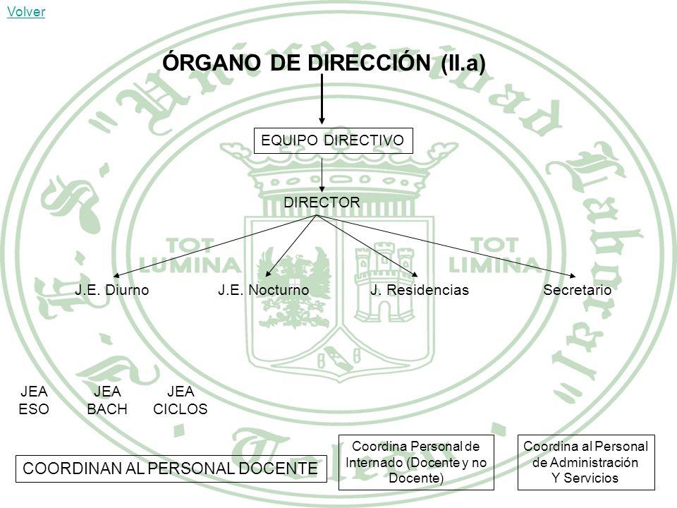 ÓRGANO DE DIRECCIÓN (II.a)