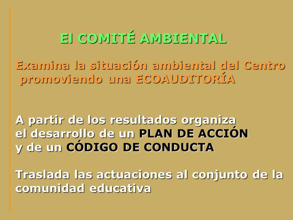 El COMITÉ AMBIENTAL Examina la situación ambiental del Centro