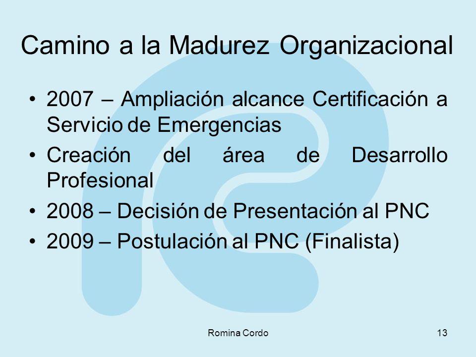 Camino a la Madurez Organizacional