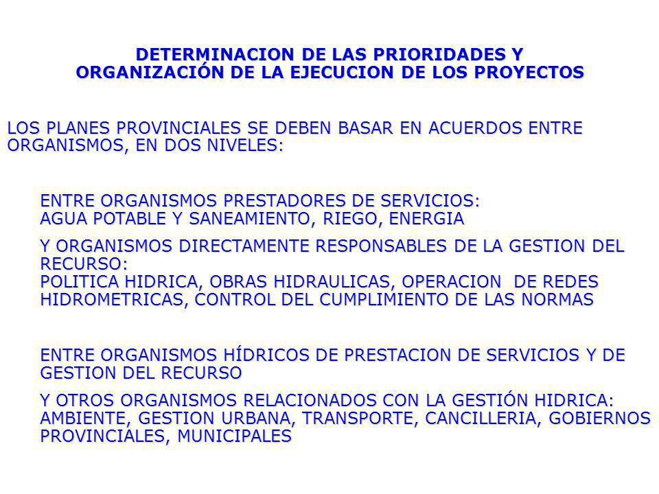 DETERMINACION DE LAS PRIORIDADES Y ORGANIZACIÓN DE LA EJECUCION DE LOS PROYECTOS