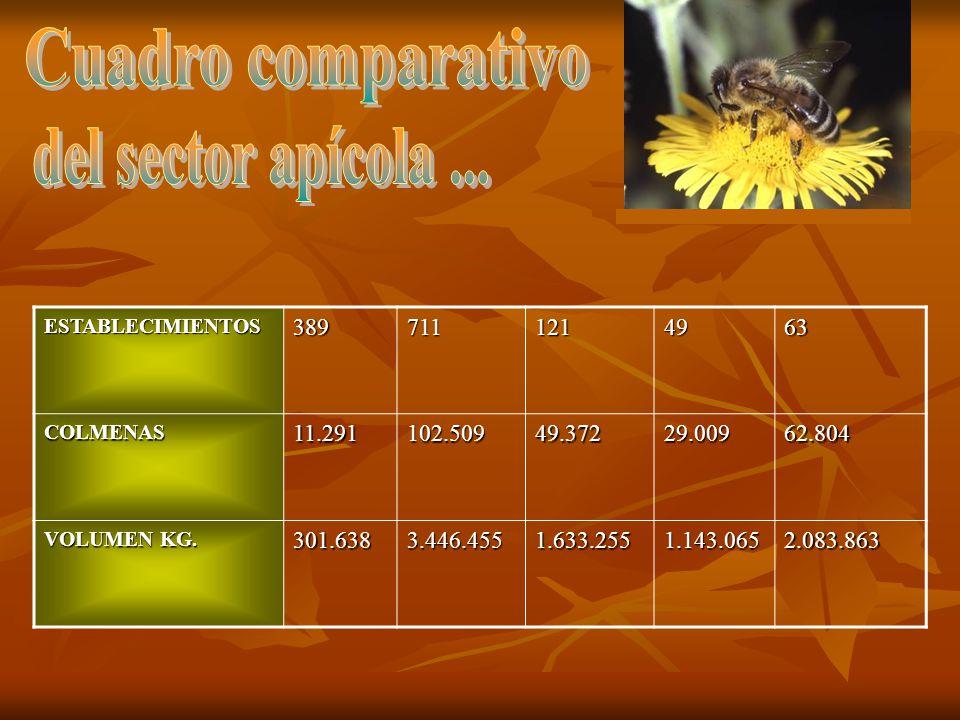 Cuadro comparativo del sector apícola ...