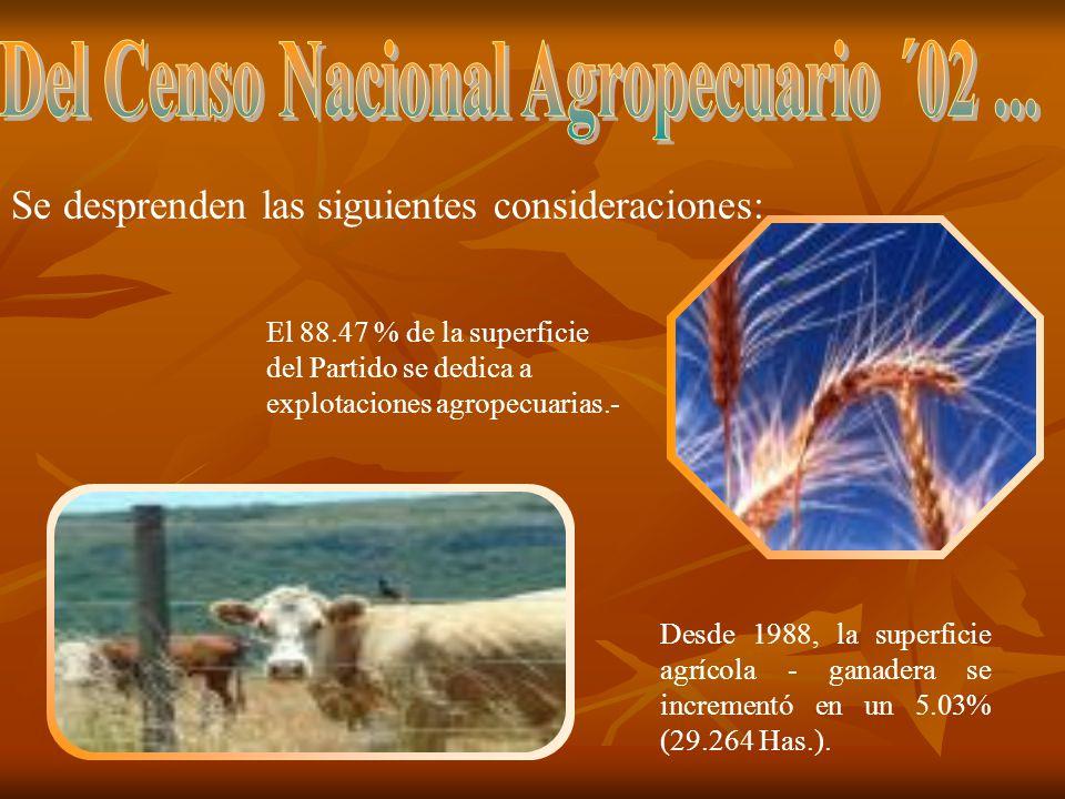 Del Censo Nacional Agropecuario ´02 ...