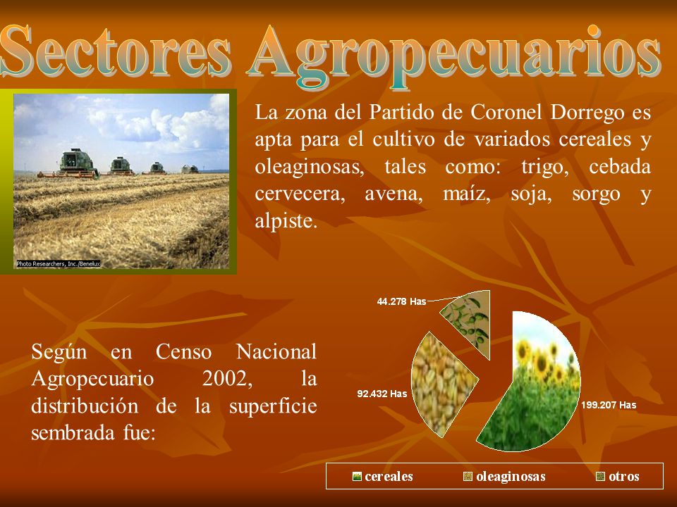 Sectores Agropecuarios