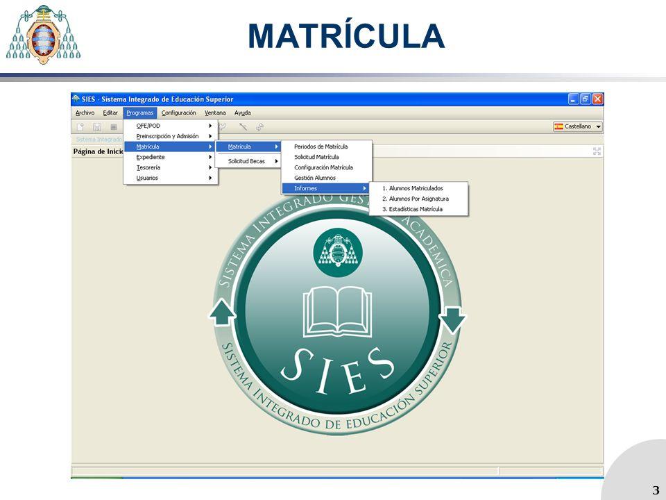 MATRÍCULA 3 3