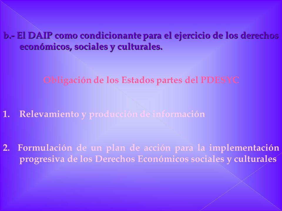 Obligación de los Estados partes del PDESYC
