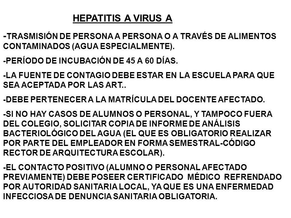 HEPATITIS A VIRUS A -TRASMISIÓN DE PERSONA A PERSONA O A TRAVÉS DE ALIMENTOS CONTAMINADOS (AGUA ESPECIALMENTE).