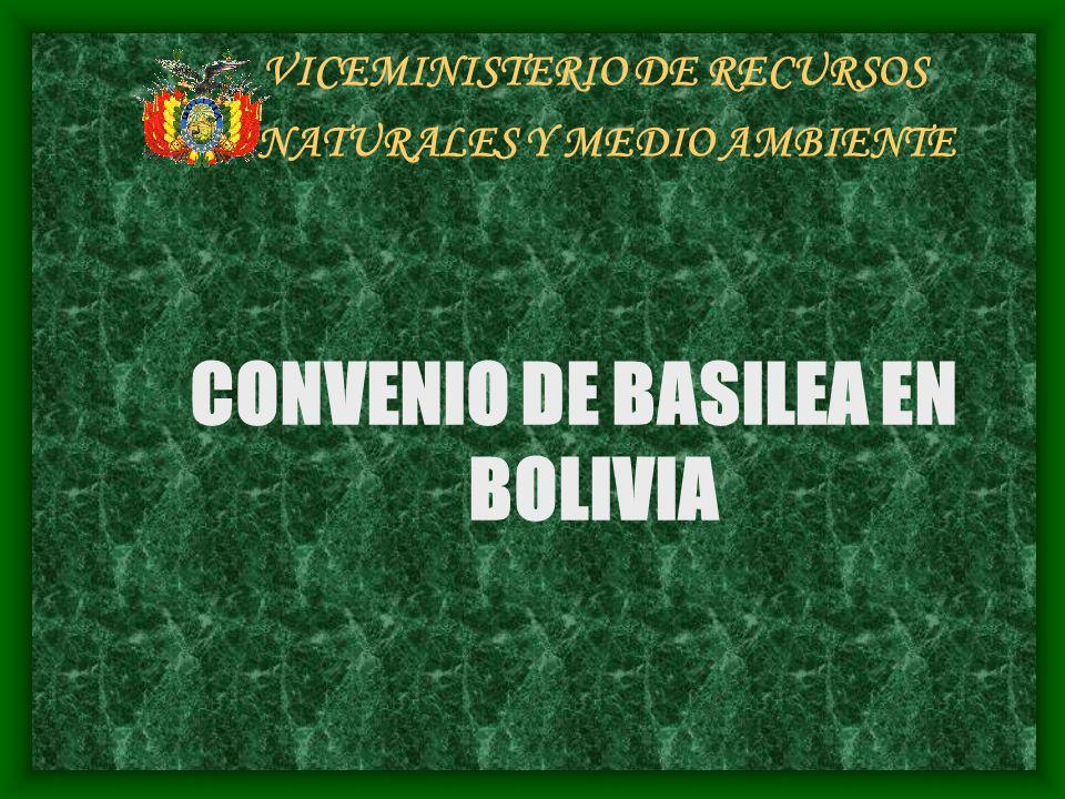 VICEMINISTERIO DE RECURSOS NATURALES Y MEDIO AMBIENTE