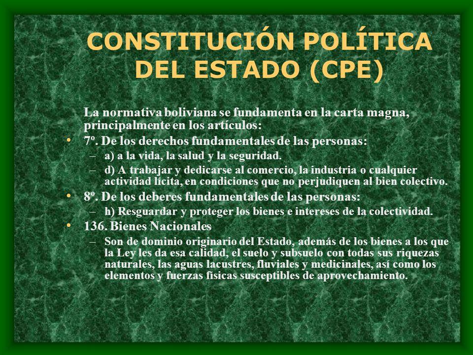 CONSTITUCIÓN POLÍTICA DEL ESTADO (CPE)