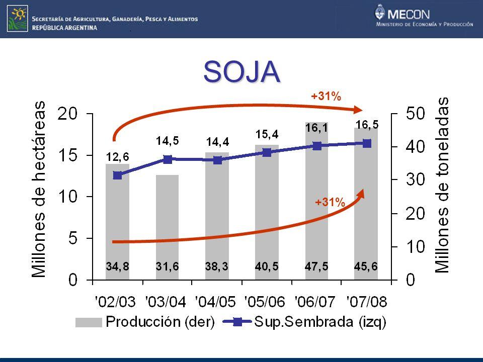 SOJA +31% +31%