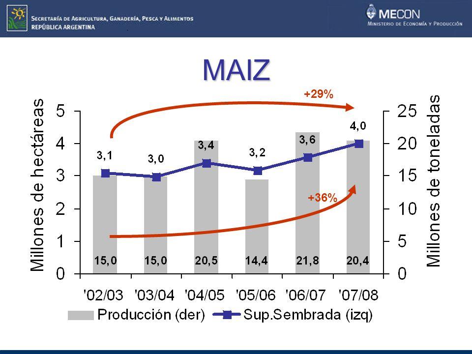 MAIZ +29% +36%