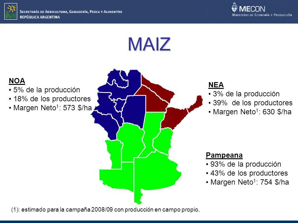 MAIZ NOA 5% de la producción NEA 18% de los productores