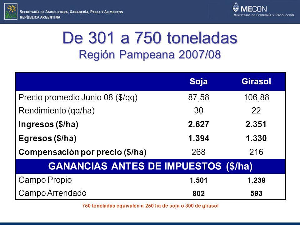 De 301 a 750 toneladas Región Pampeana 2007/08
