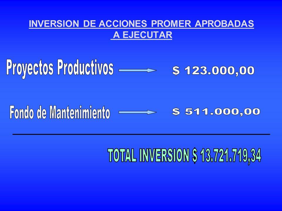 INVERSION DE ACCIONES PROMER APROBADAS A EJECUTAR