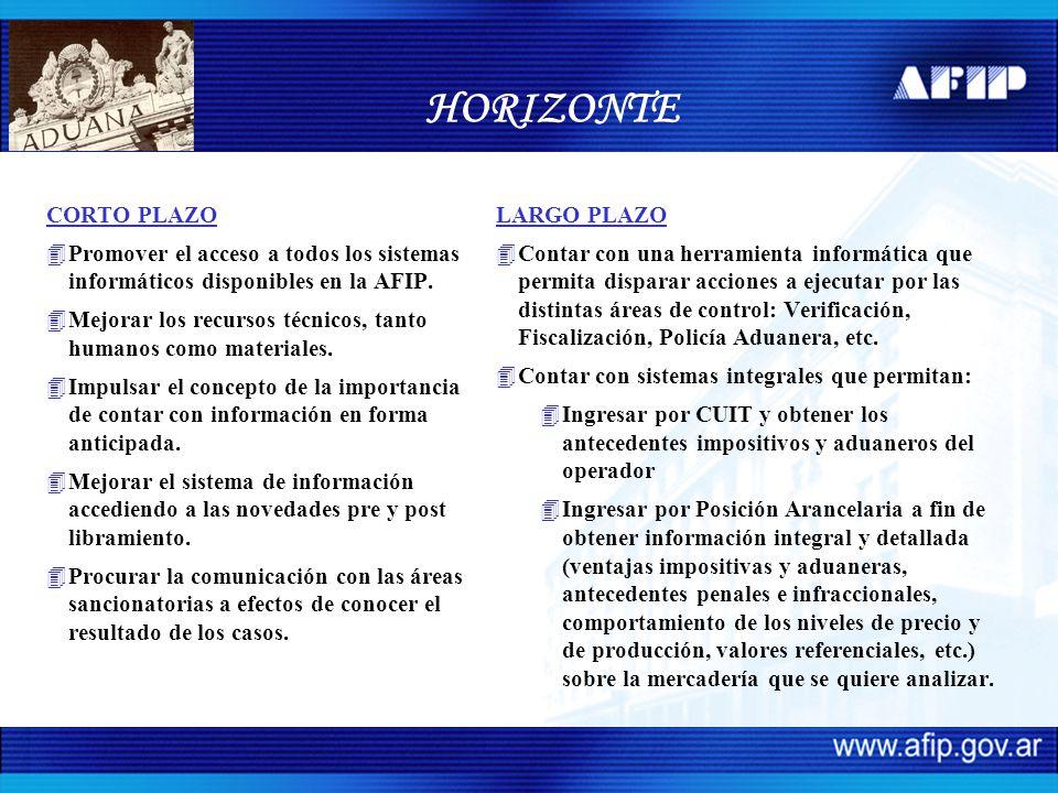 HORIZONTE CORTO PLAZO. Promover el acceso a todos los sistemas informáticos disponibles en la AFIP.