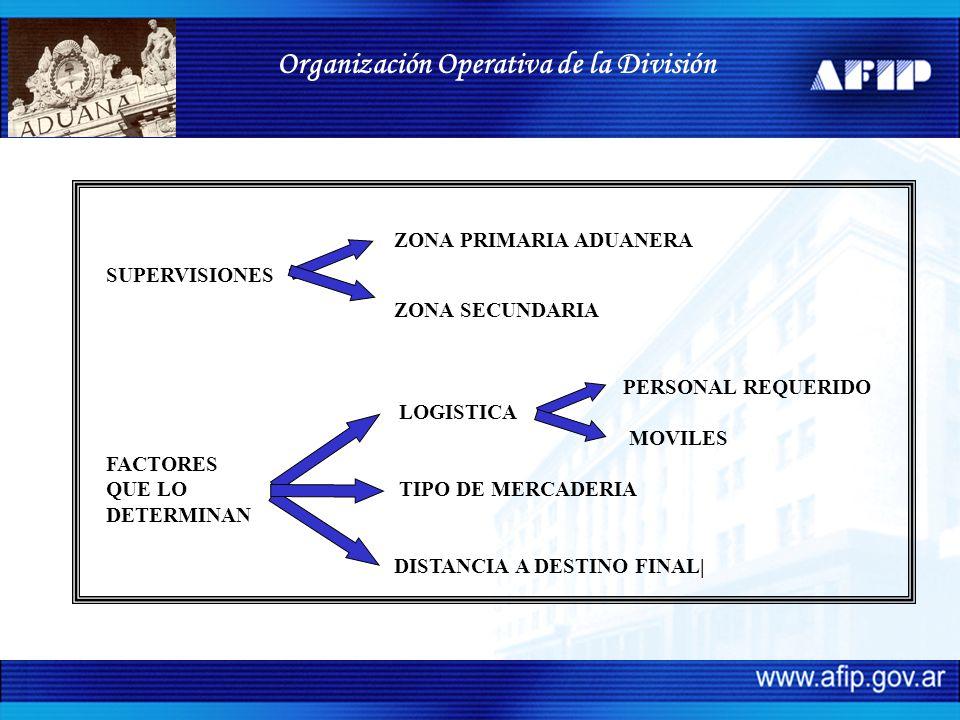 Organización Operativa de la División