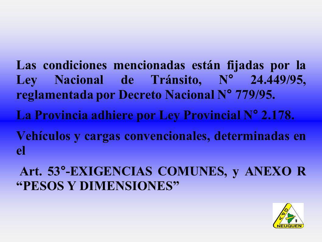 Las condiciones mencionadas están fijadas por la Ley Nacional de Tránsito, N° 24.449/95, reglamentada por Decreto Nacional N° 779/95.