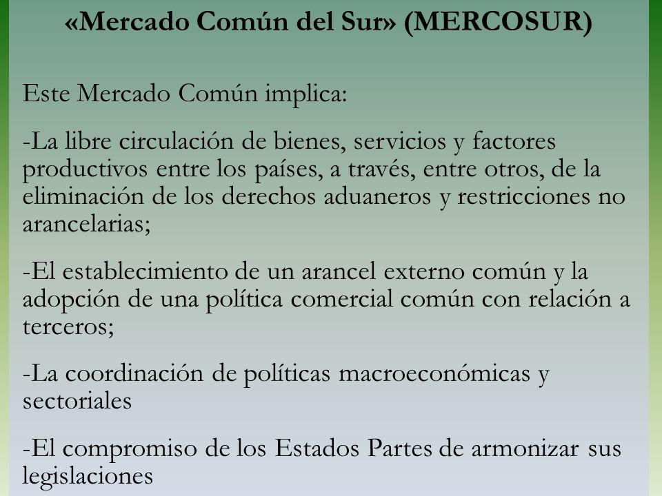 «Mercado Común del Sur» (MERCOSUR)