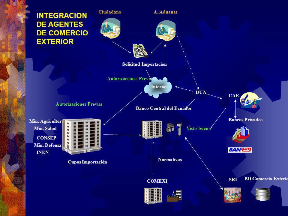 INTEGRACION DE AGENTES DE COMERCIO EXTERIOR