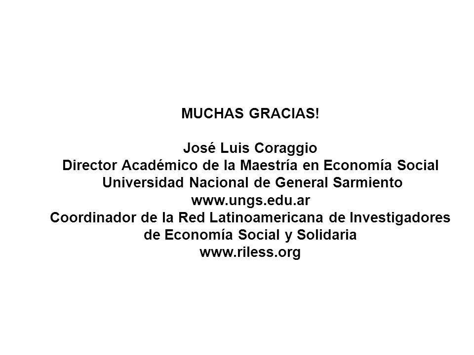 Director Académico de la Maestría en Economía Social
