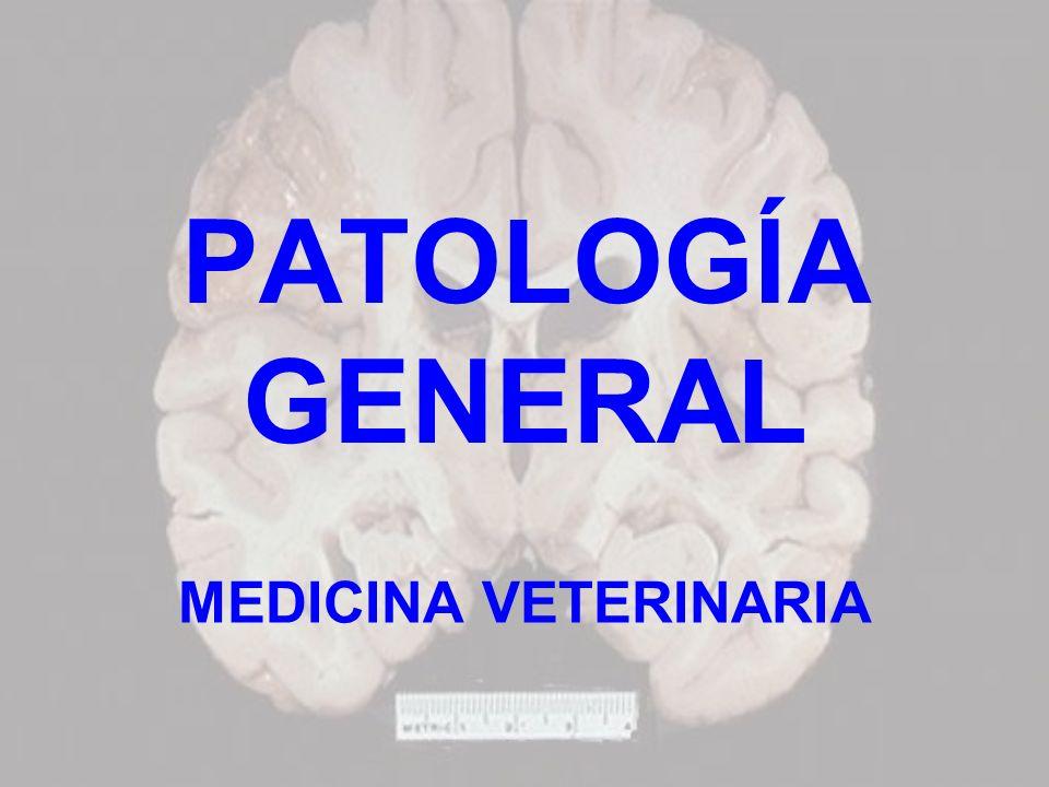 PATOLOGÍA GENERAL MEDICINA VETERINARIA