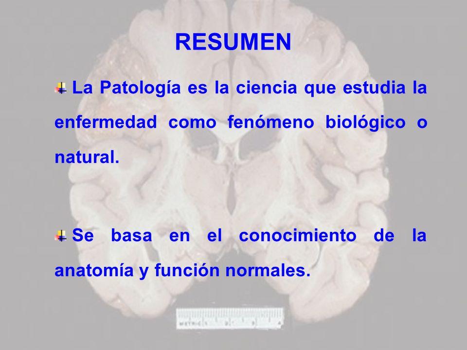 RESUMEN La Patología es la ciencia que estudia la enfermedad como fenómeno biológico o natural.