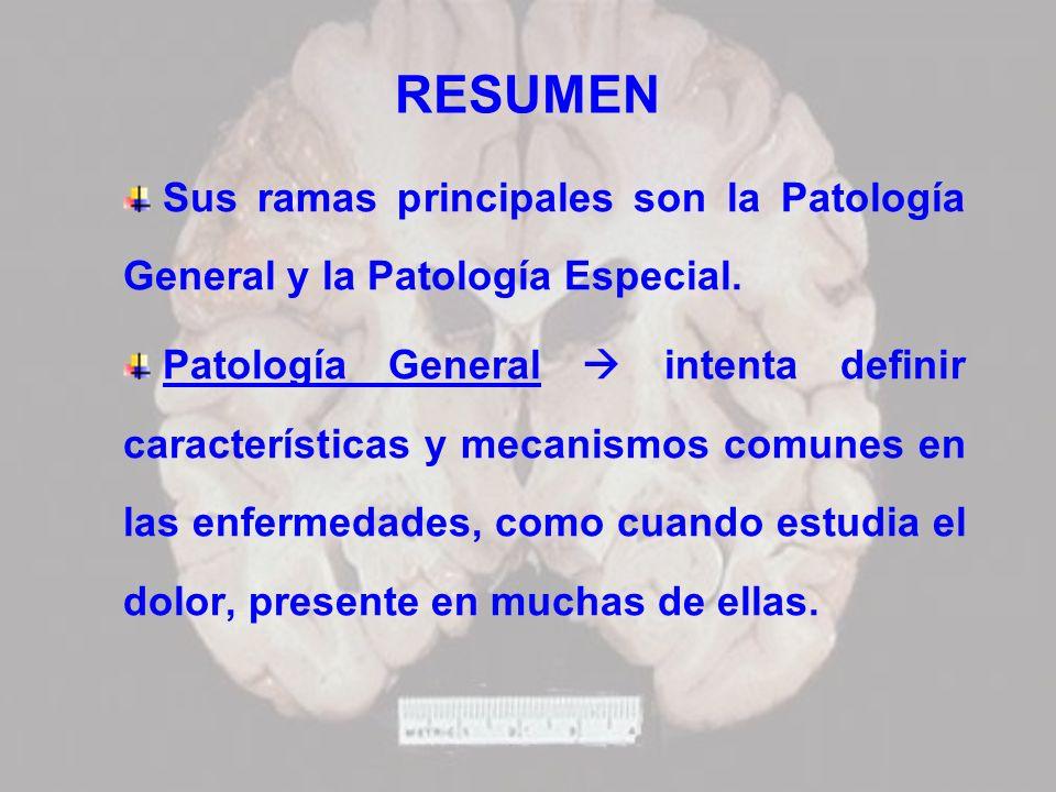 RESUMENSus ramas principales son la Patología General y la Patología Especial.