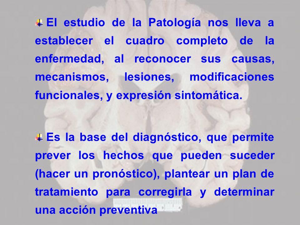 El estudio de la Patología nos lleva a establecer el cuadro completo de la enfermedad, al reconocer sus causas, mecanismos, lesiones, modificaciones funcionales, y expresión sintomática.