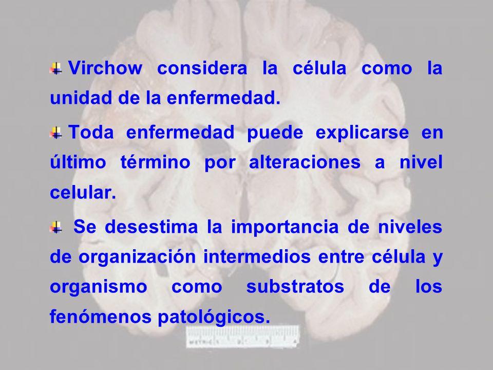 Virchow considera la célula como la unidad de la enfermedad.