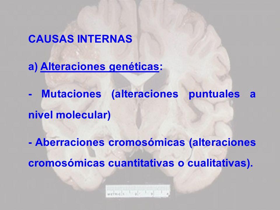 CAUSAS INTERNAS a) Alteraciones genéticas: - Mutaciones (alteraciones puntuales a nivel molecular)