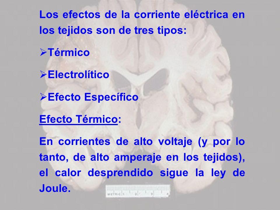 Los efectos de la corriente eléctrica en los tejidos son de tres tipos: