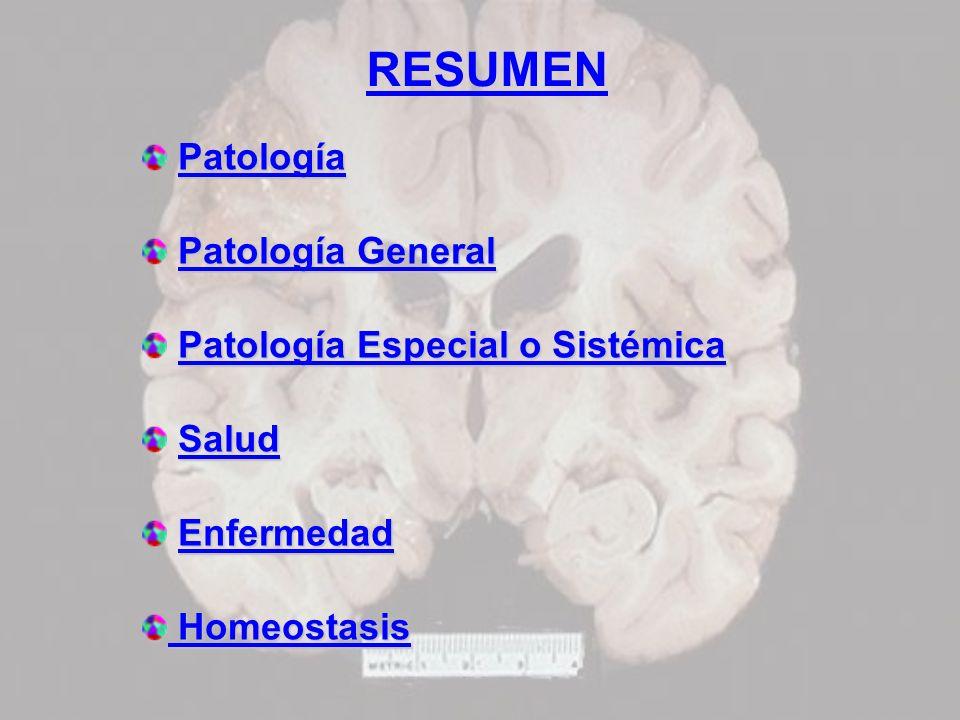 RESUMEN Patología Patología General Patología Especial o Sistémica