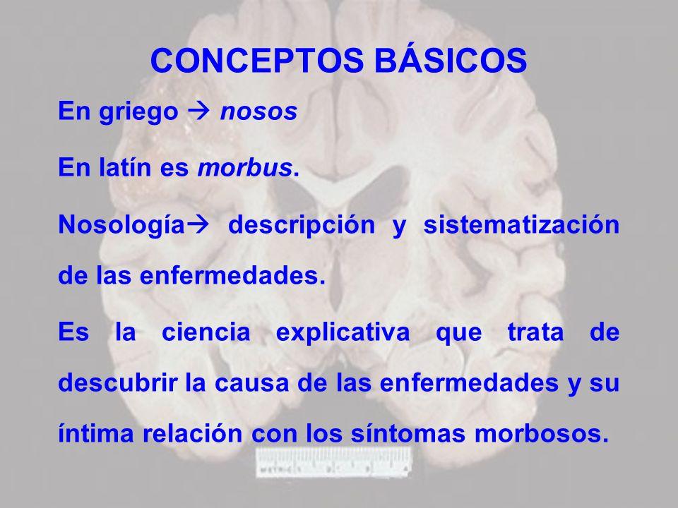 CONCEPTOS BÁSICOS En griego  nosos En latín es morbus.