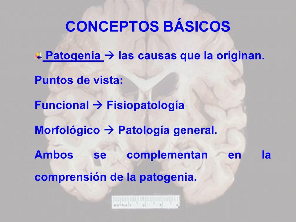 CONCEPTOS BÁSICOS Patogenia  las causas que la originan.