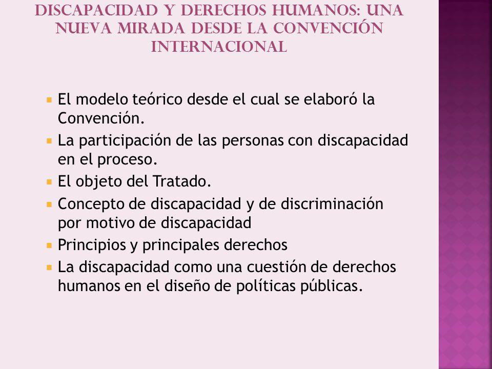 Discapacidad y derechos humanos: una nueva mirada desde la convención internacional