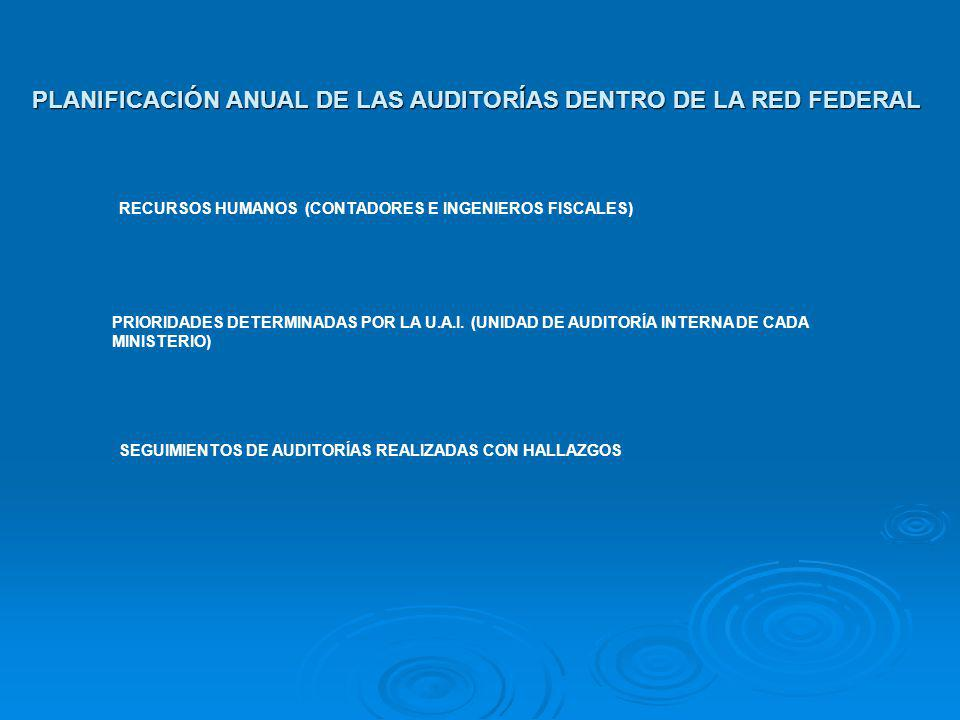 PLANIFICACIÓN ANUAL DE LAS AUDITORÍAS DENTRO DE LA RED FEDERAL