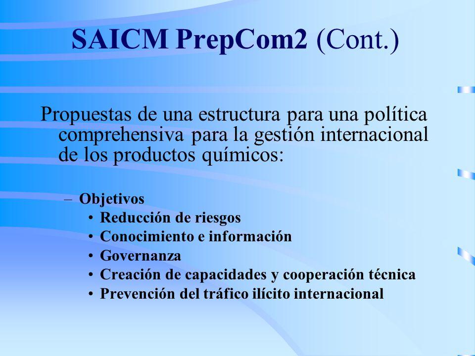 SAICM PrepCom2 (Cont.) Propuestas de una estructura para una política comprehensiva para la gestión internacional de los productos químicos:
