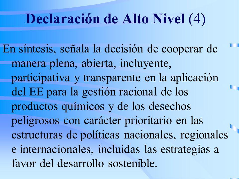 Declaración de Alto Nivel (4)