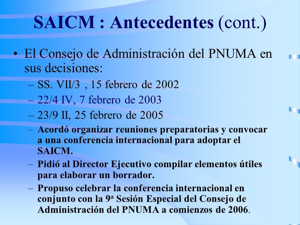 SAICM : Antecedentes (cont.)
