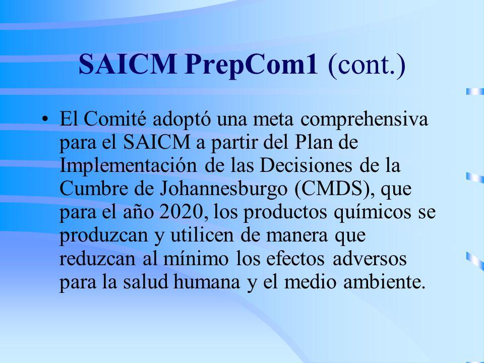 SAICM PrepCom1 (cont.)