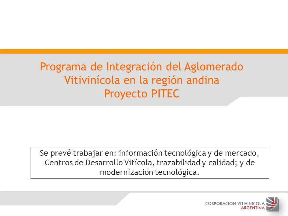 Programa de Integración del Aglomerado Vitivinícola en la región andina