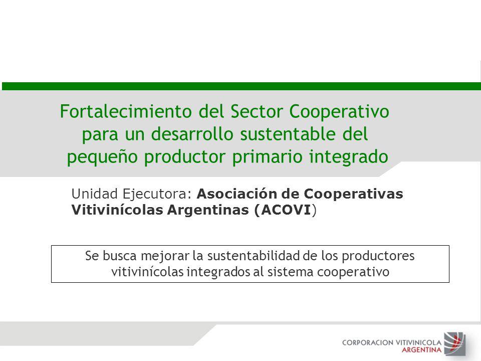 Fortalecimiento del Sector Cooperativo