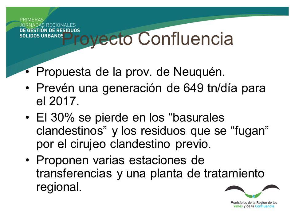 Proyecto Confluencia Propuesta de la prov. de Neuquén.