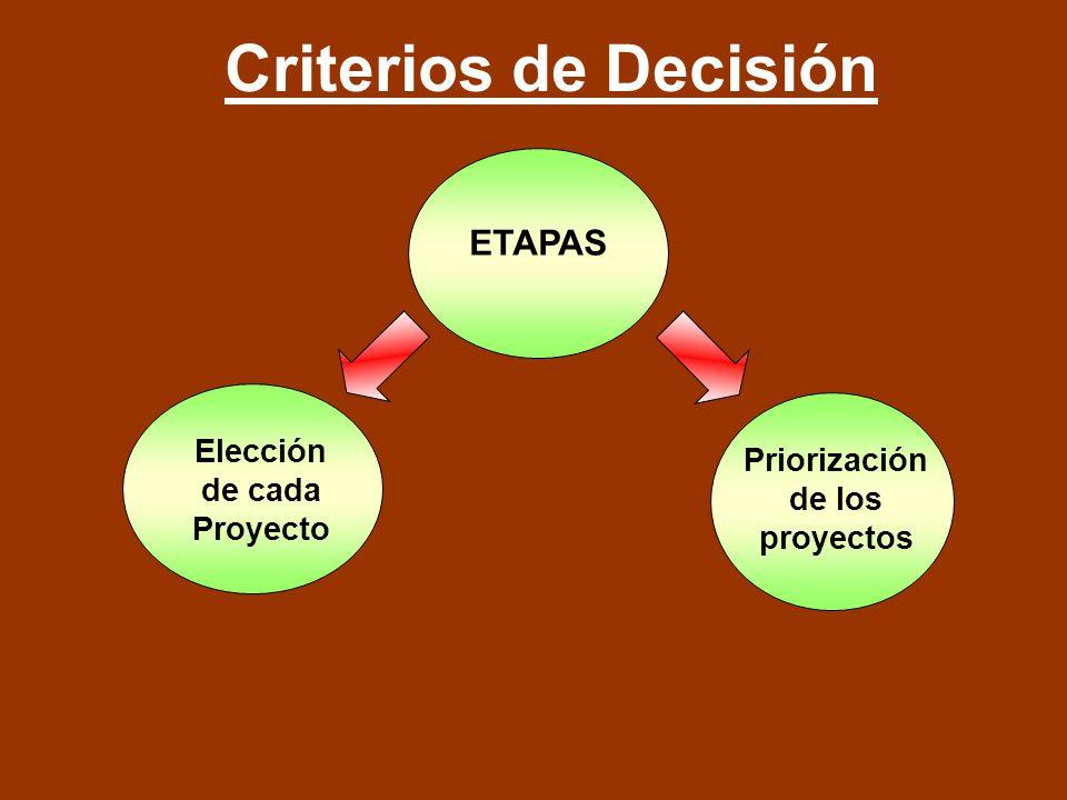 Elección de cada Proyecto Priorización de los proyectos