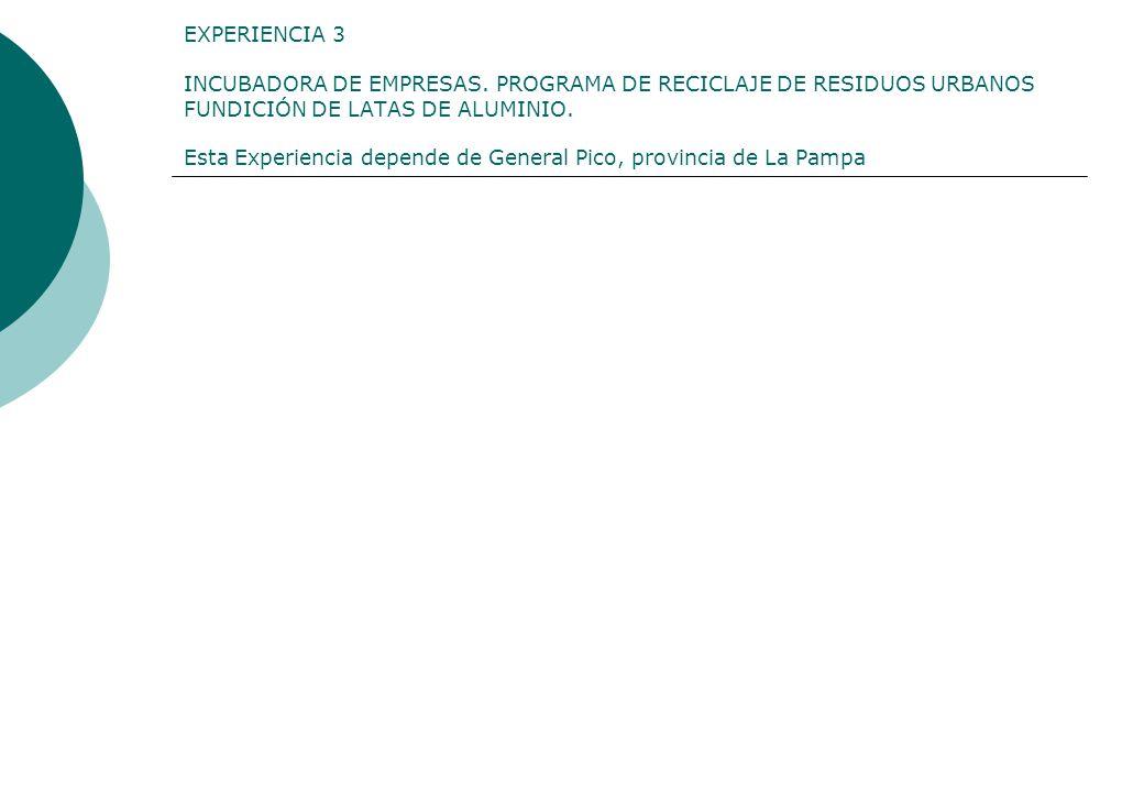 EXPERIENCIA 3 INCUBADORA DE EMPRESAS