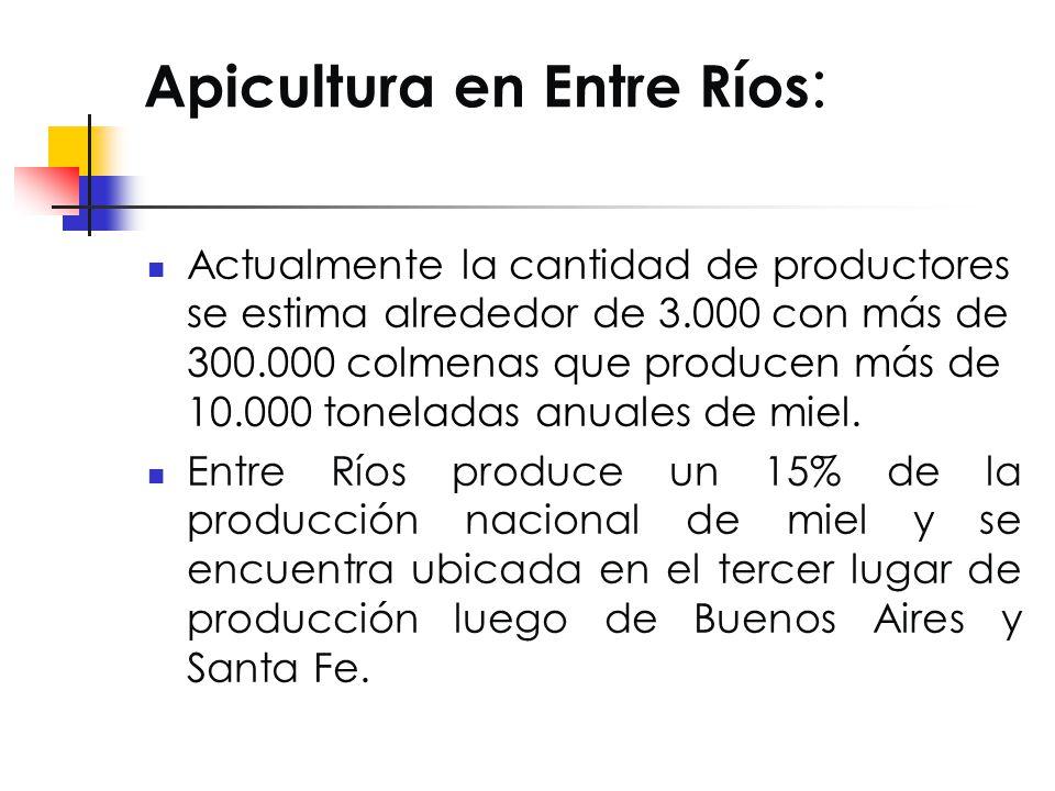 Apicultura en Entre Ríos: