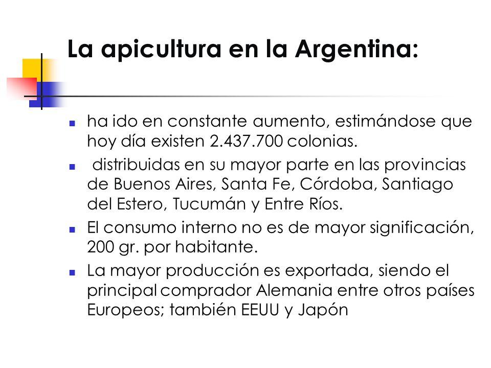 La apicultura en la Argentina: