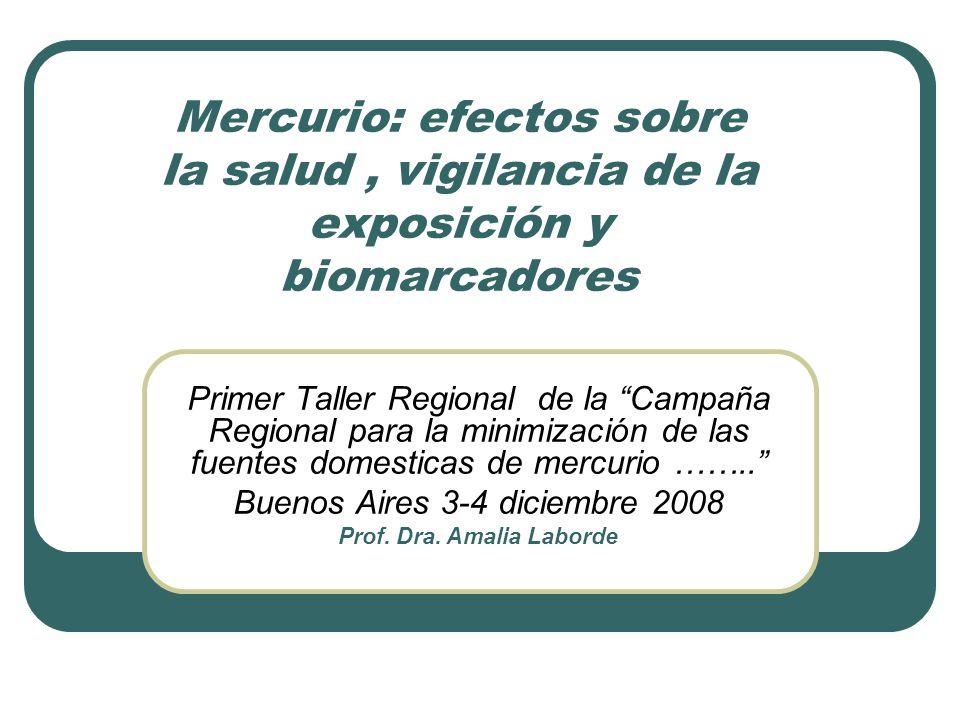 Prof. Dra. Amalia Laborde